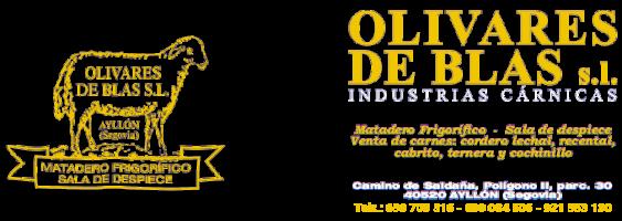 Olivares de Blas, S.L.